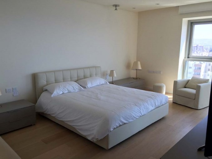 Olympic Apartment 2102 (34)